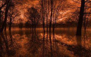 Autumn_at_the_End_Landscape_Wallpaper-Brahms - Peças para Piano Opus 118