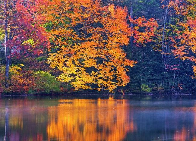 Brahms - Quinteto para Clarineta e Cordas, Op. 115 - Libby Lake in late autumn_Canada_1