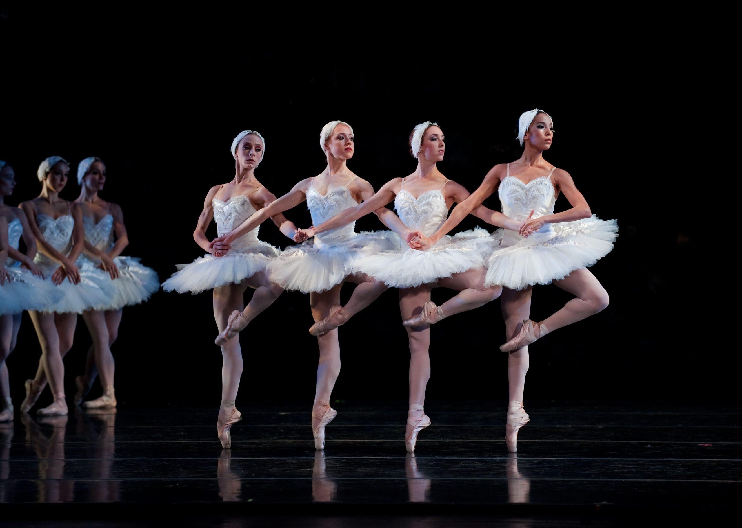 Tchaikovsky – O Lago dos Cisnes: Dança dos Pequenos Cisnes